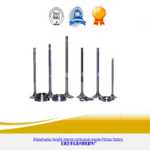 Marine ZIBO250 Engine Parts Engine Valve