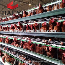 3 Tiers Layer Chicken Poultry Battery Cages para Nigerian Farm