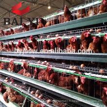Cages de batterie de volaille de poulet de couche de 3 rangées pour la ferme nigériane