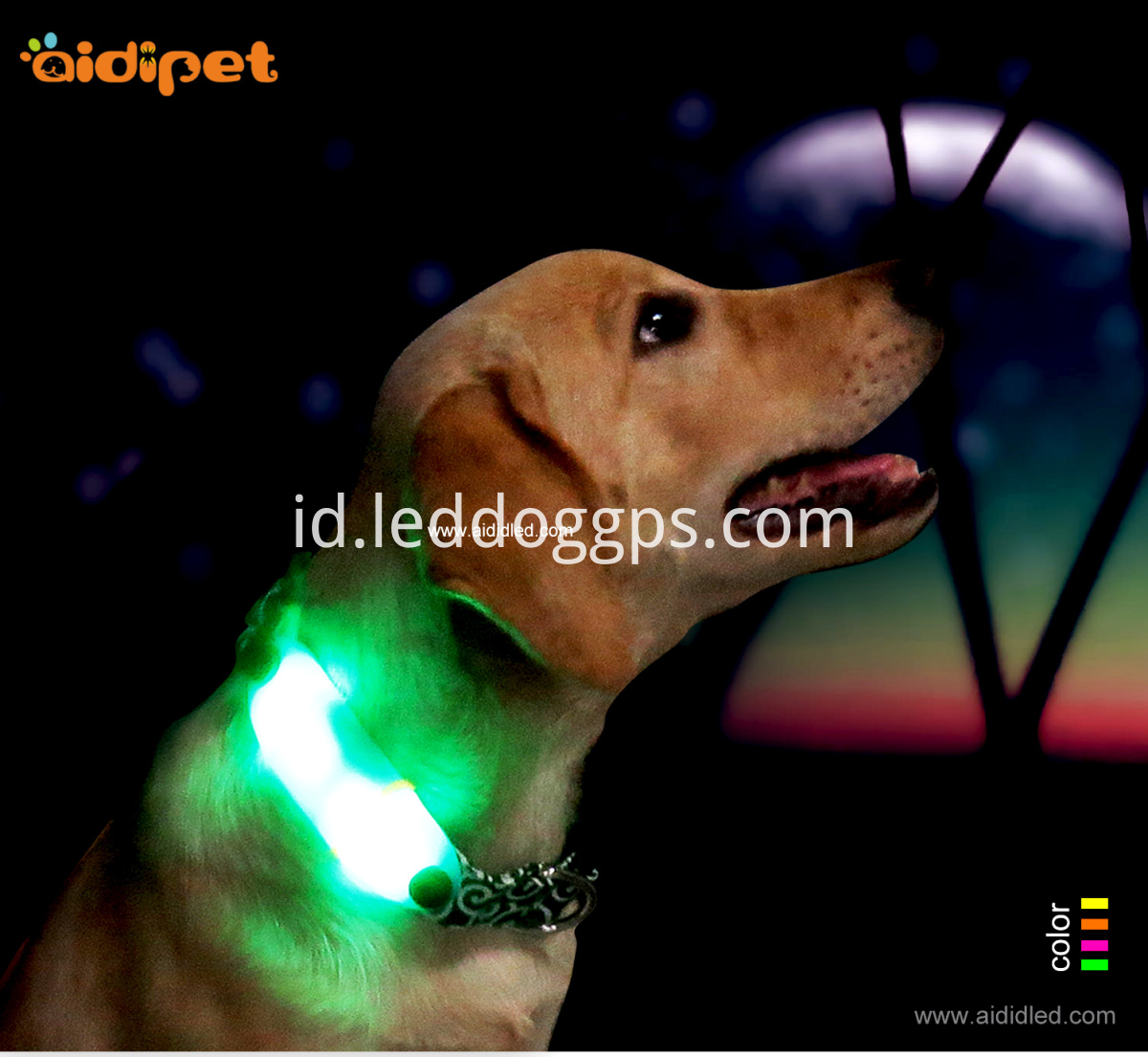 Luminous Night Safety Dog Collar