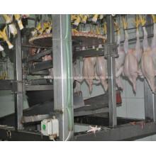 Máquina de corte de pés de galinha