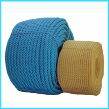 10mm 12-Strang UHMWPE hohlen Zopf Seil festmachen
