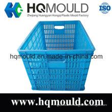 Moule en plastique adapté aux besoins du client de caisse de HDPE pour le stockage avec la certification d'OIN