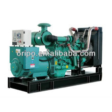 250kva 60hz prix génératrice diesel électrique en Chine fabricant de générateur électrique