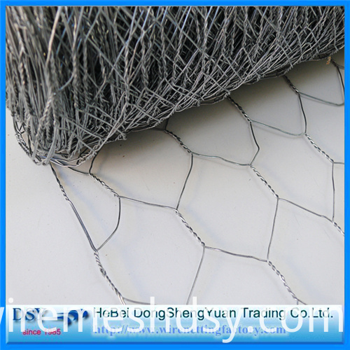Hexagonal-Wire-Mesh