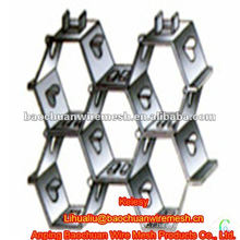 Stainless steel wire 304 big mud claw Tortoise Shell Mesh(Factory)