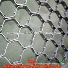 Heat resisting Stainless steel Tortoise Shell Mesh(Factory)