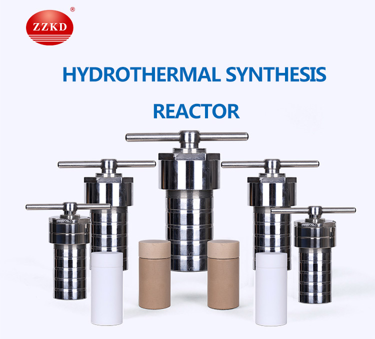 Teflon Lined Hydrothermal Synthesie Reactor
