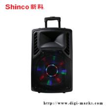 12 altavoz inalámbrico estéreo de Bluetooth del amplificador promocional de 15 pulgadas