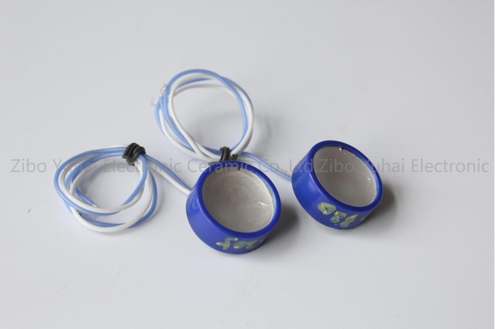 Cosmetologic Transducer 2
