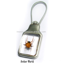 fantastic real spiner spider resin  key chain(crystal style)