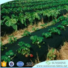 Tissus non tissés résistants aux UV de l'agriculture pp