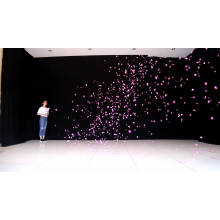 Pink or Blue Picture Perfect reveal Gender Reveal Confetti Shooter