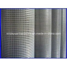 High Quality Stainless Steel Galvanized Welded Wire Mesh