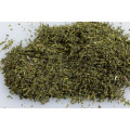 Chá verde certificado Sencha orgânico
