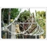 Hot sale concertina razor barbed wire