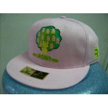 Tampões e chapéus feitos sob encomenda do snapback / tampões / snapback do hip-hop da forma