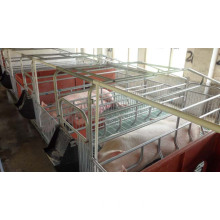 Swine Farrowing Crates With New Style Slatted Floor