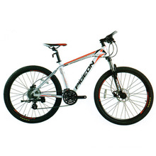 Hot Sale 24 Sp MTB Aluminum Mountain Bike (FP-MTB-A04)