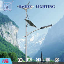 7m Pole 60W LED Lamp Solar Wind Turbine Street Light (BDTYN760-w)