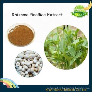 Extracto natural de 100% de Rhizoma Pinelliae