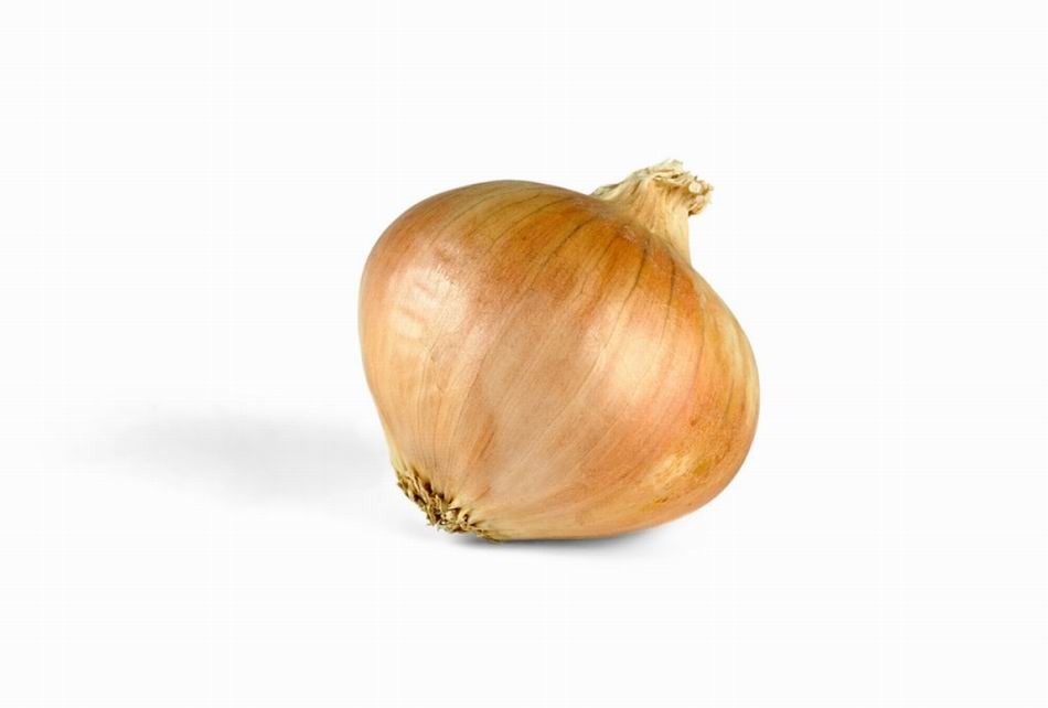 Yellow Onion 24