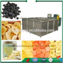 Сушилка для бутылочного белья в Китае, Сушилка для пара, Фруктовая овощная сушилка