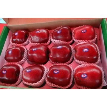 frische gansu huaniu Äpfel