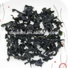 Export Kosher Dark Green Grade ABC Secas Cortadas Wakame Seaweed