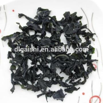 Exportar Kosher Dark Green Grade ABC secado corte Wakame algas marinas