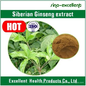 Eleutheroside (B+E) Natural Siberian Ginseng Root Extract Powder