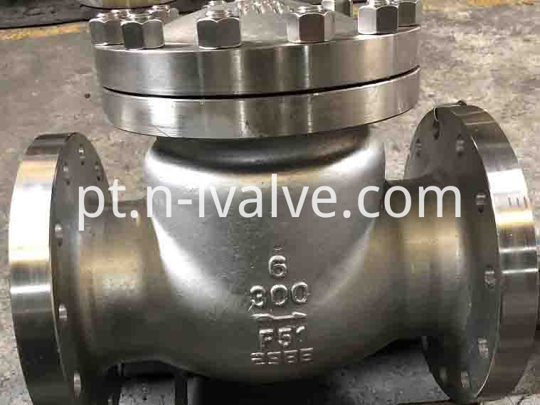Duplex Steel Swing Check Valve