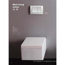 Toilette suspendue stable en lave-vaisselle (DS1044)