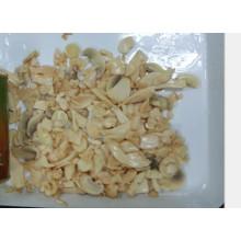 Champignons chinois d'huîtres de bébé IQF