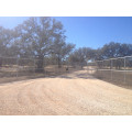 Cattle Fence/Sheep Fence/Field Fence (Factory Price)