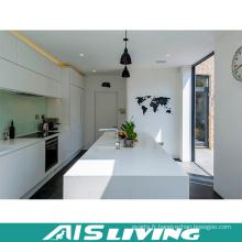 Cabinet professionnel de cuisine et fabricant d'ébénisterie domestique (AIS-K746)