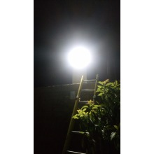 Solar Street Light for Algeria Market