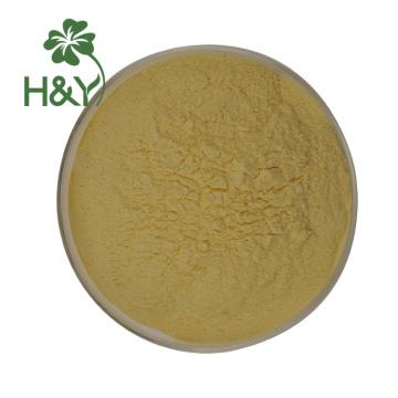 baies de goji en gros extrait de poudre de baies de goji