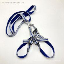 Braided Paracord Nylon Rope Dog Leash