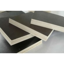 American Standard Film Faced Plywood Construction Grade