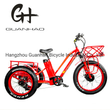 24inch Fat Tire Adult 3wheel 48V1000W China Tricycle OEM CE Cpsc En15194 21ah 3 Wheel Cargo Electric Bicycle