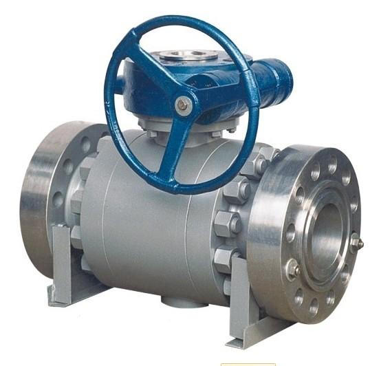 Fixed Ball Valve