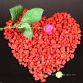Top grade goji berry/sweet goji berry
