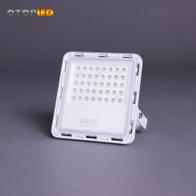 IP65 30W LED Floodlights New design