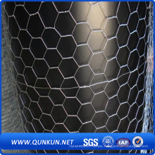 Hot Dipped Gal Hexagonal Chicken Wire Mesh with Factory Price