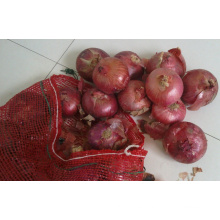 Verduras frescas cebolla roja exportadores India