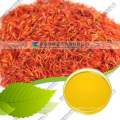 Safflower Yellow Pigment with Color Value E100
