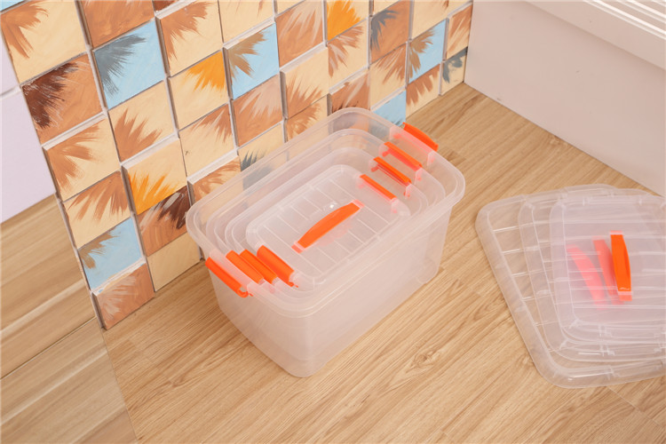 Clear Storage Box With Handle