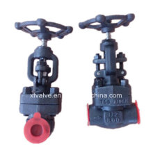 API Standard Forged Carbon Steel A105 Thread End Globe Valve