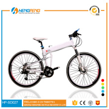 Titanrahmen MTB Export Mountainbike